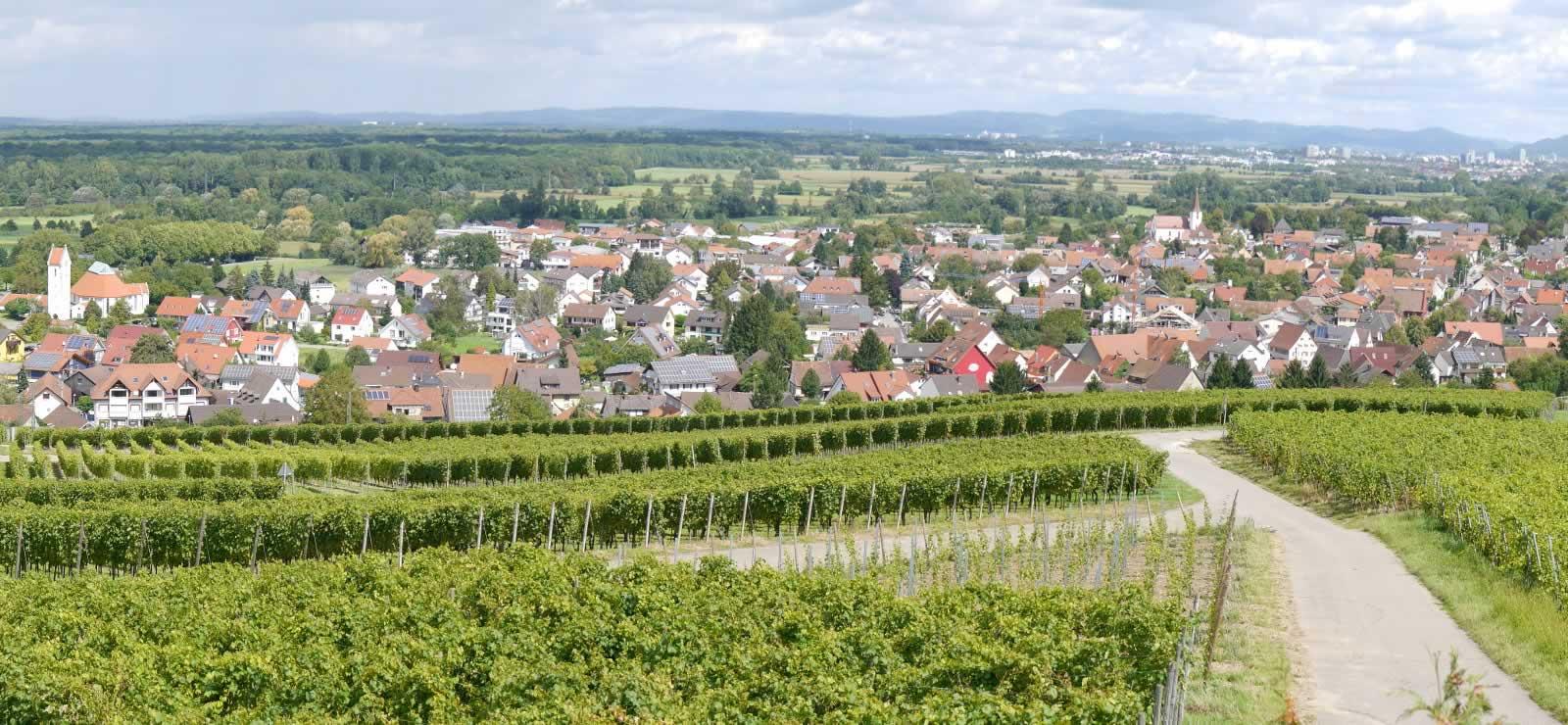 Schallstadt Panoramabild