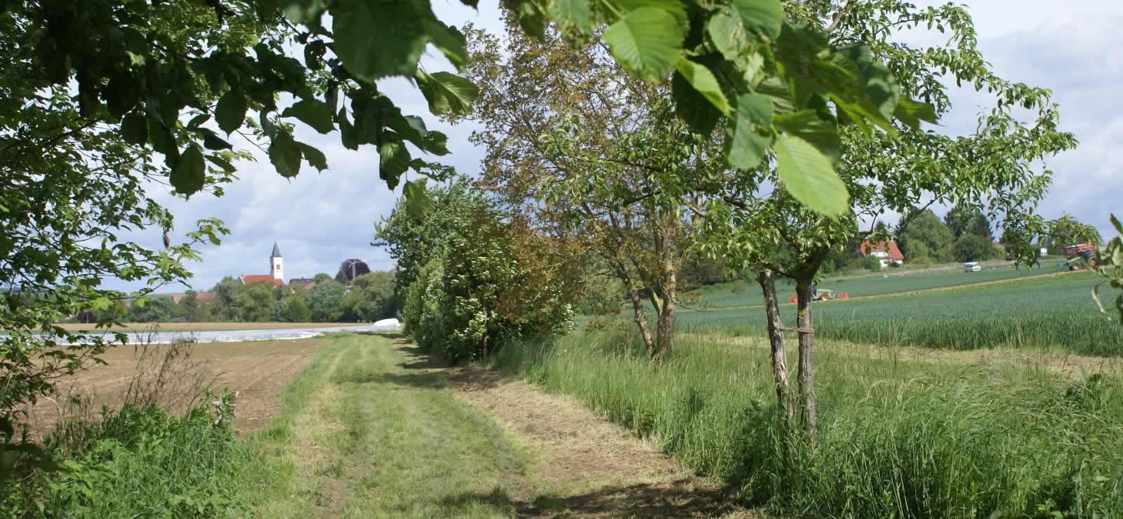 Ansicht Ortsteil Mengen